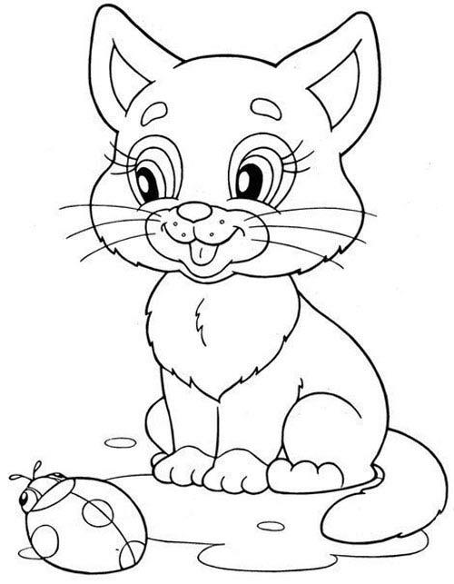 Рисунок кошки карандашом