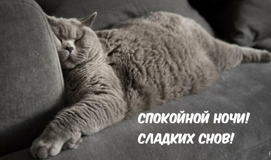 Спокойной ночи, друзья. Открытки с пожеланиями