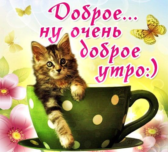 С добрым утром, любимая!