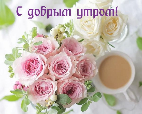 С добрым утром — цветы