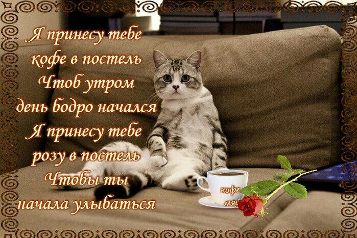 Доброе прекрасное утро