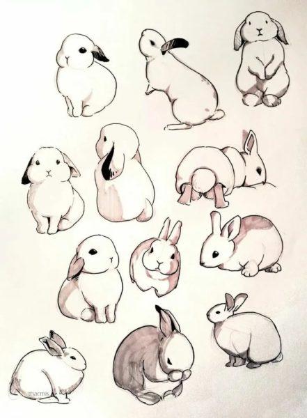 250 рисунков карандашом: легкие и красивые картинки